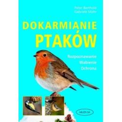 Dokarmianie ptaków. Rozpoznawanie, wabienie, ochrona