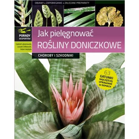 Jak pielęgnować rośliny doniczkowe. Choroby i szkodniki