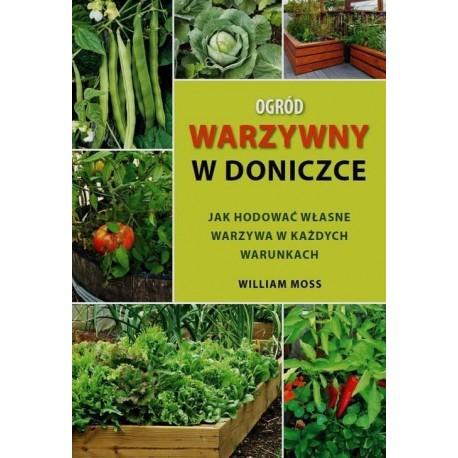 Ogród warzywny w doniczce