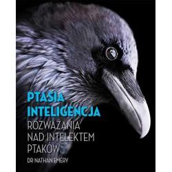 Ptasia inteligencja. Rozważania nad intelektem ptaków