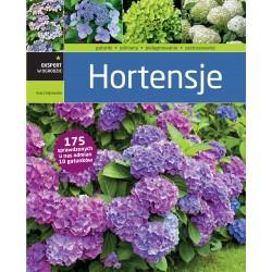 Hortensje